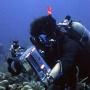 Вот так выглядит подводная съёмка в Сочи