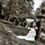 Лучший свадебный фотограф в Сочи
